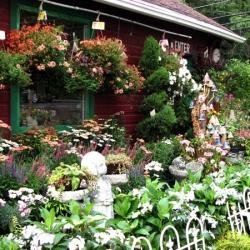 jessicas-garden-12