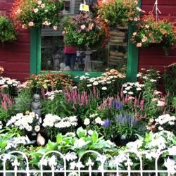 jessicas-garden-13