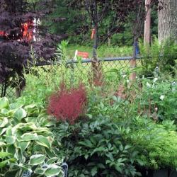 jessicas-garden-19