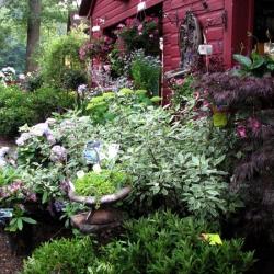 jessicas-garden-20
