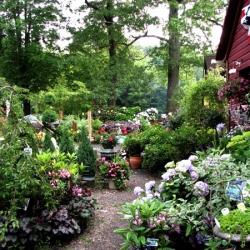 jessicas-garden-21